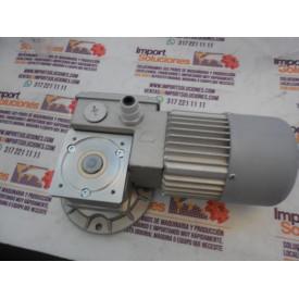 MOTOR TELA 42-0013929 / MC244PT 60 B5